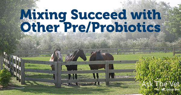 Mixing Succeed with Other Pre/Probiotics