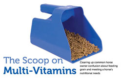 The-Scoop-on-Multi-Vitamins