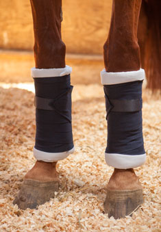 0b7340b697 How To Wrap Your Horse s Legs