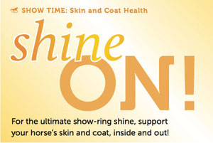 Shine-On-blog