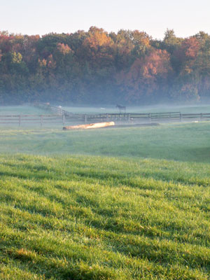 Barn Of The Month New Albany Granville Equestrian Center