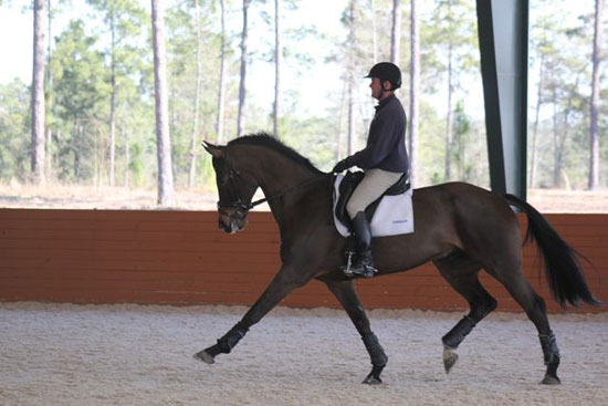 Phillip_MightyNice_dressage