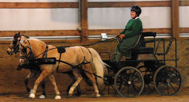HUB Club member Grace Frejlach-Grubb and the pair of small ponies Chaos-ey and Dreamer. Photo by Karen Davila.