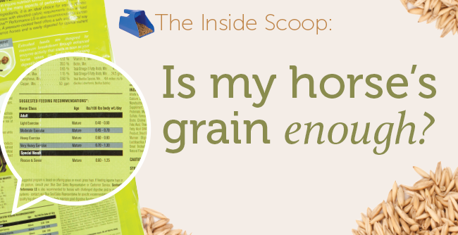 header-grain-scoop