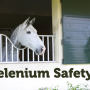 Selenium-Safety