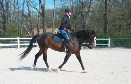 Starting training at home April/May 2012 (foot still wrapped from injury sustained while in quarantine).