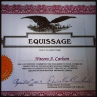 Equissage Certificate