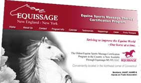 Becoming An Equine Sports Massage Therapist Smartpak Blog