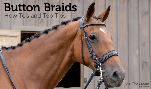 Button Braids: How To's and Top Tips | SmartPak Blog