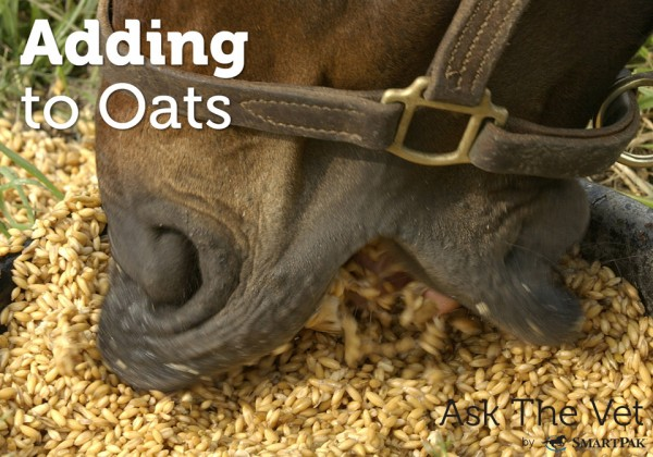 adding-to-oats-header