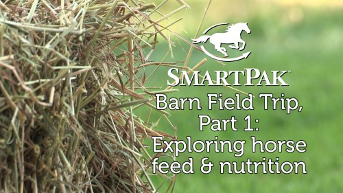 SmartPak Barn Field Trip Part 1 - Exploring horse feed and nutrition_thumb