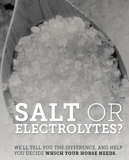 salt or electrolytes headline