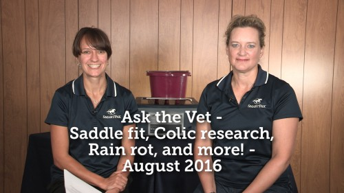 Ask the Vet - Saddle fit, Colic research, Rain Rot, and more! - August 2016_thumb