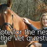 Ask the Vet_voting thumb
