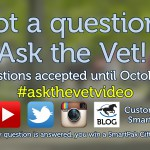 ask-the-vet-needs-your-questions-for-the-november-2016-episode_thumb