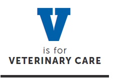 v is for veterinary care