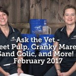 Ask the Vet - Beet Pulp, Cranky Mares, Sand Colic, and More! - February 2017_thumb