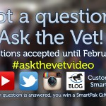 Ask your horse health questions for our March 2017 Ask the Vet video_thumb
