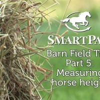 SmartPak Barn Field Trip Part 5 - Measuring horse height_thumb