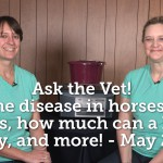 Ask the Vet - Lyme Disease in horses fly sheets how much can a horse carry and more - May 2016