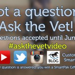 Ask the Vet needs your questions - June 2016_thumb