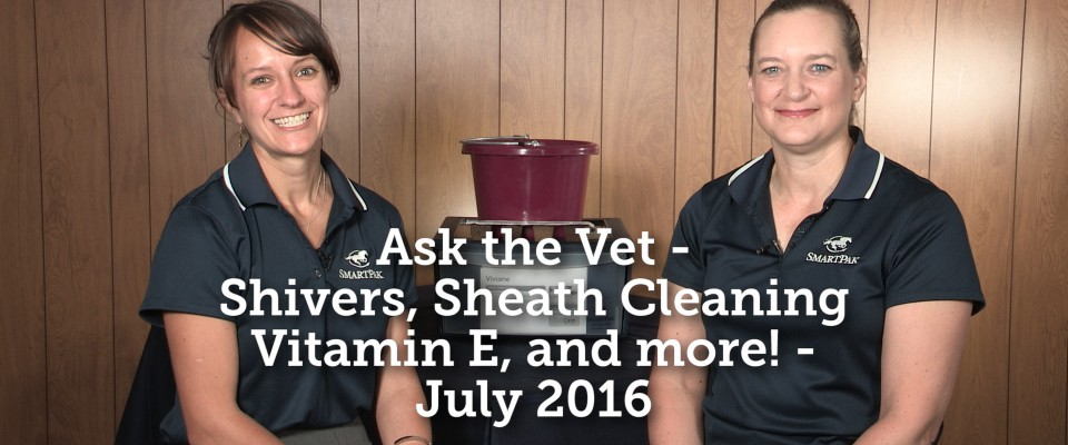 Ask the Vet - July 2016_thumb