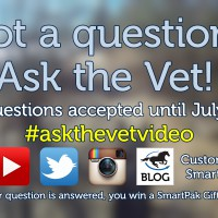 Ask the Vet needs your questions! - July 2016_thumb