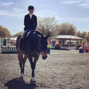 Horse Show Must Haves 2020 8
